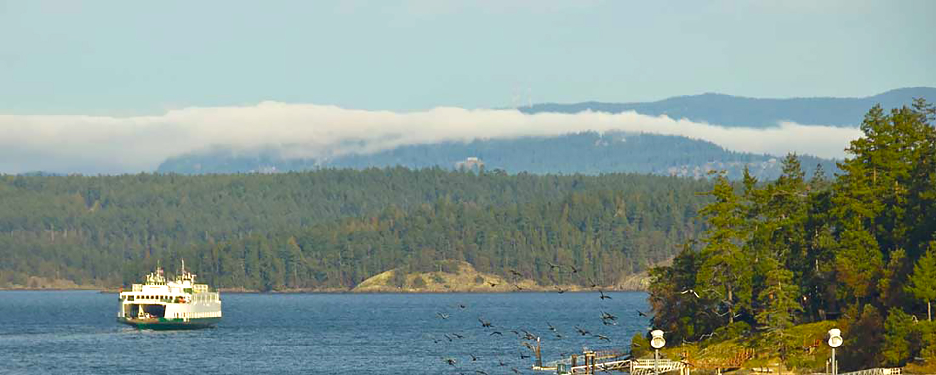 vacation rental friday harbor with ferry