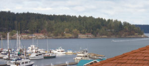 Waterview Vacation Rental-view from living room Friday Harbor